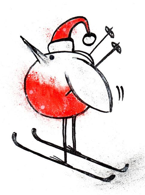 Sporty Robin 4 - Skier