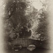 Footbridge And Tower