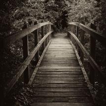 Footbridge At Yalding