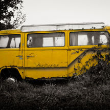 Overgrown VW Van