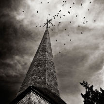 Crows Around The Spire