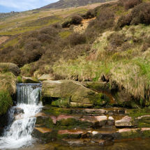 Small Stream In Derbyshire