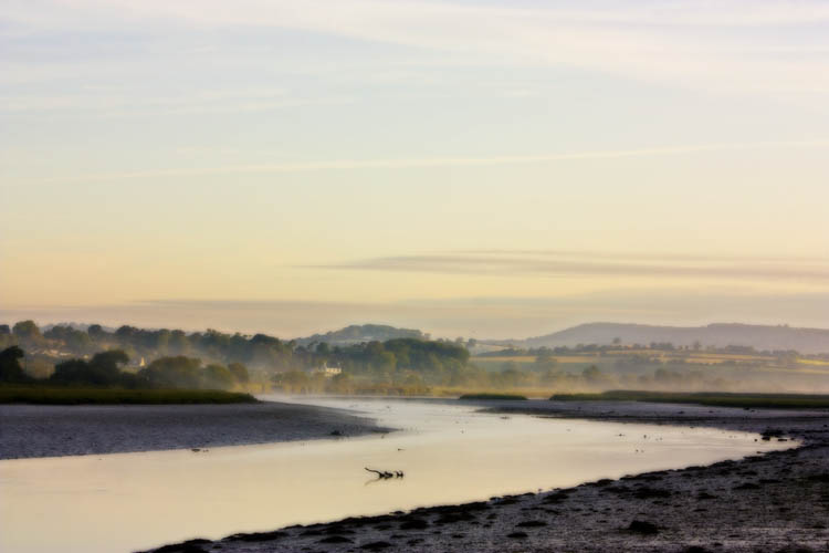 Morning Mist over River Axe Devon UK