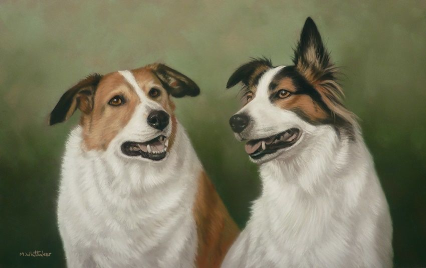 Original Pastel Painting of Pip & Finn.