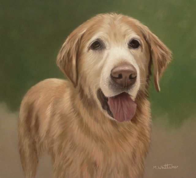 Original Pastel Painting of Fisher.