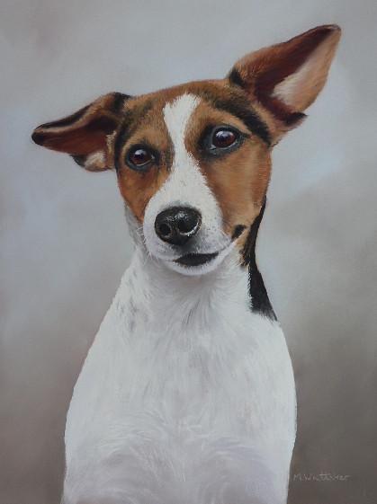Pastel Portrait Of Kim, Jack Russell Terrier