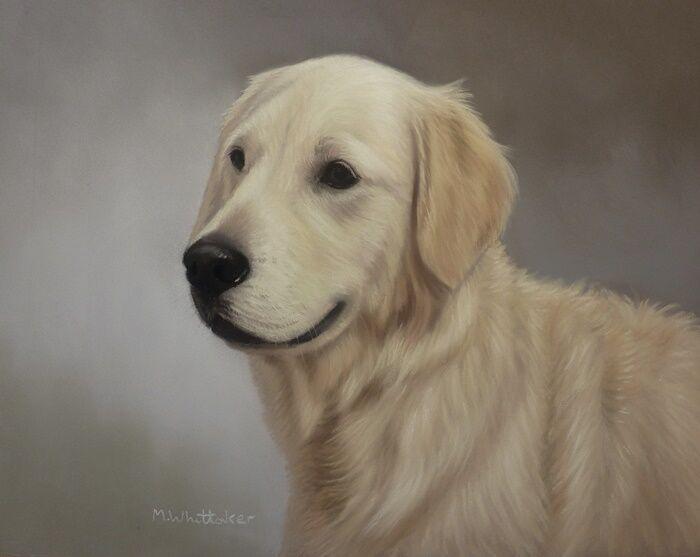 Original Pastel Painting of Beau the Golden Retriever