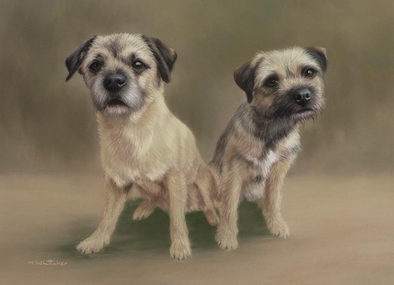 Original Pastel Painting Of Border Terriers, Ryley & Tillie.