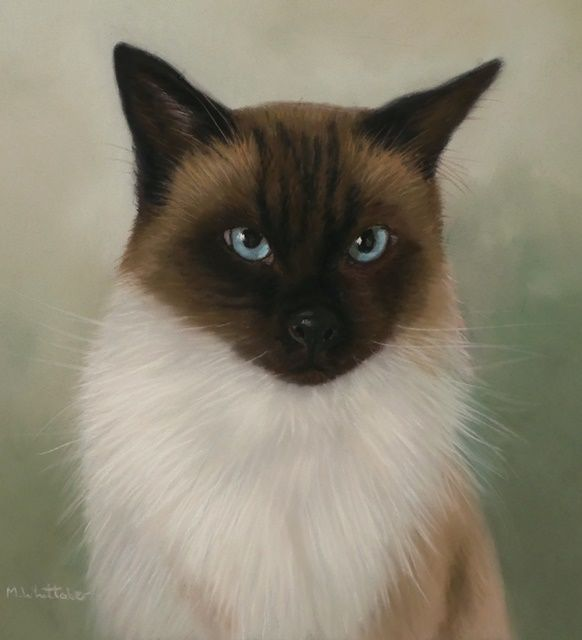 Original Pastel Painting of Merlin