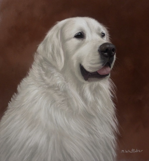 Original Pastel Painting of Brix.
