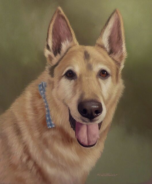 Original Pastel Painting of Buddy the German Shepherd