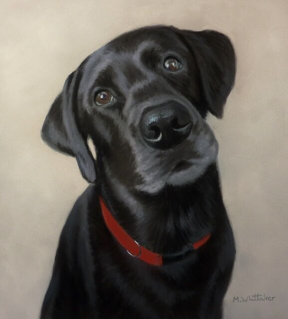Original Pastel Painting of Marly the Black Labrador
