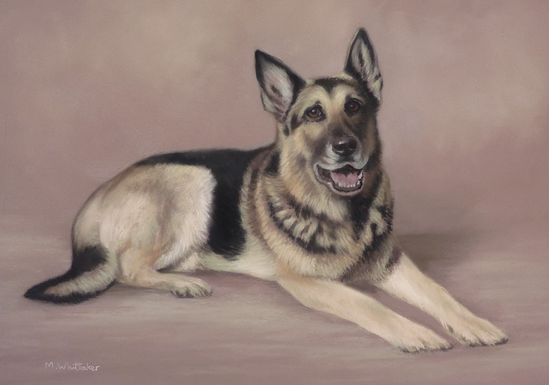 Original Pastel Painting Of Ricky The German Shepherd.