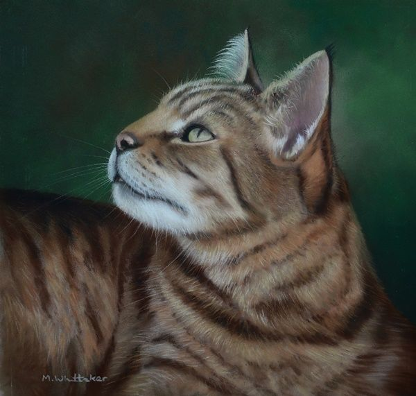 Original Pastel Painting of Mischief