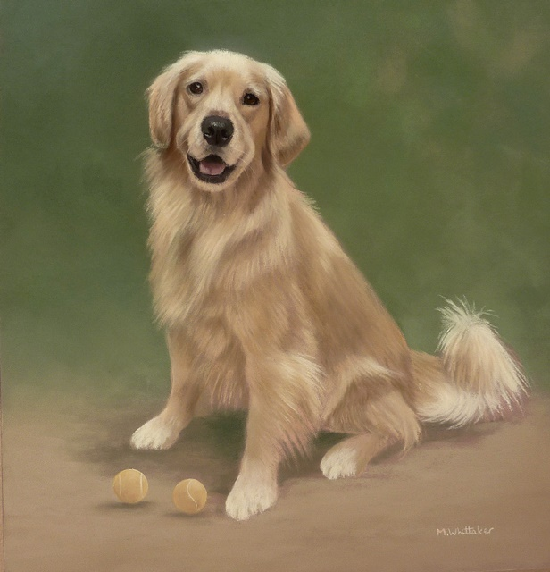 Original Pastel Painting Of Cricket The Golden Retriever.
