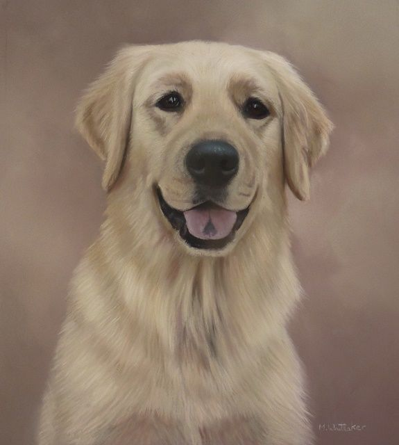 Original Pastel Painting of Bailey.