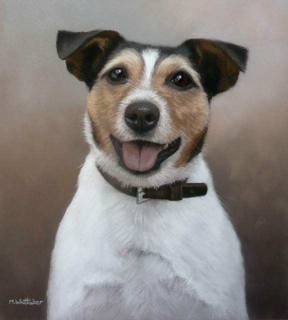 Original Pastel Painting of Jed The Jack Russell.