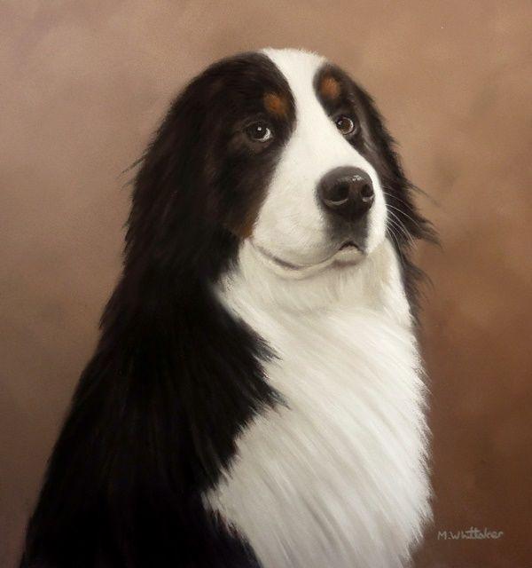 Original Pastel Painting of Reid the Bernese Mountain Dog.