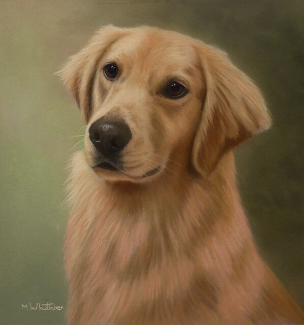 Original Pastel Painting of Delta the Golden Retriever