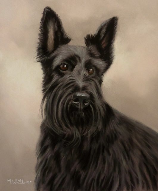 Original Pastel Painting of Mackenzie The Scottish Terrier