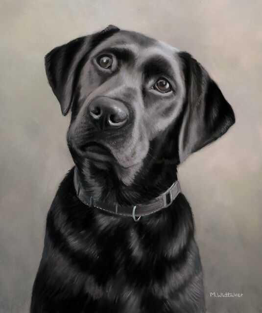 Original Pastel Painting of Brandy.