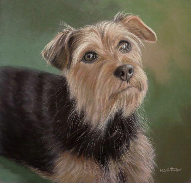 Original Pastel Painting of Cassie.