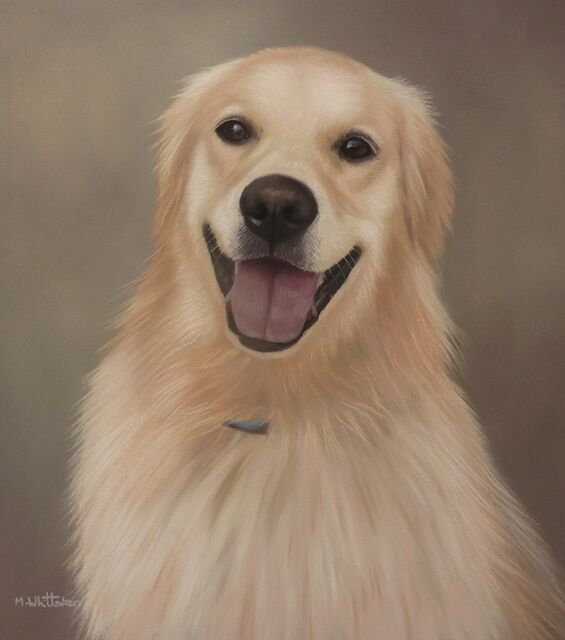 Original Pastel Painting of Remy the Golden Retriever