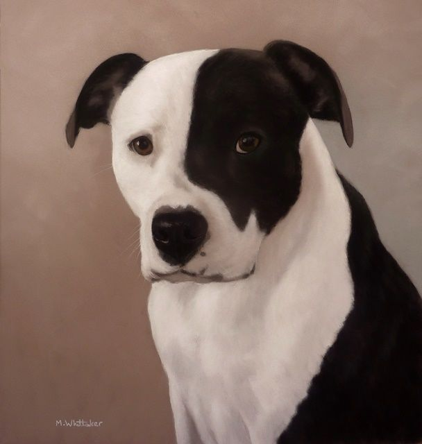 Original Pastel Painting of Lucy the american bulldog.