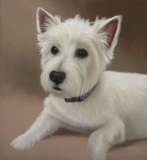 Original Pastel Painting of Sophie.