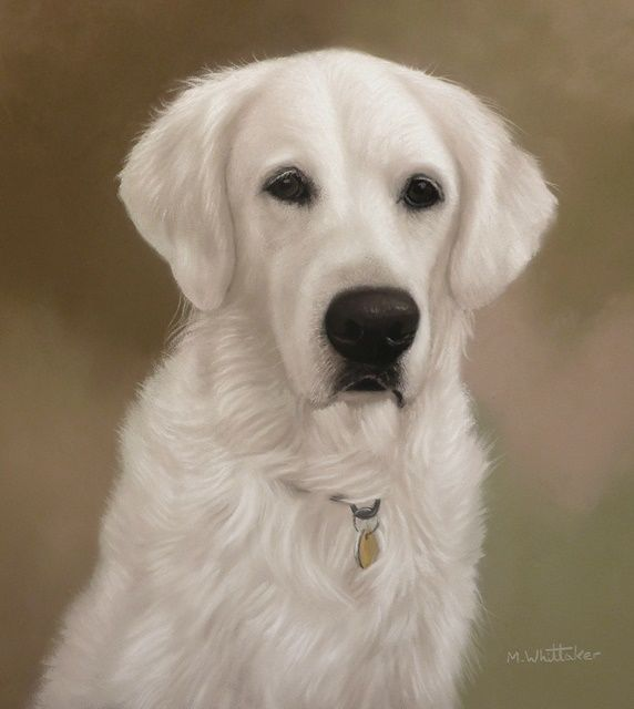 Original Pastel Painting of Sophie.