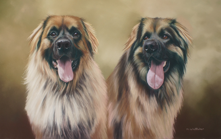 Original Pastel Painting Of Paddle & Enzo, Leonbergers