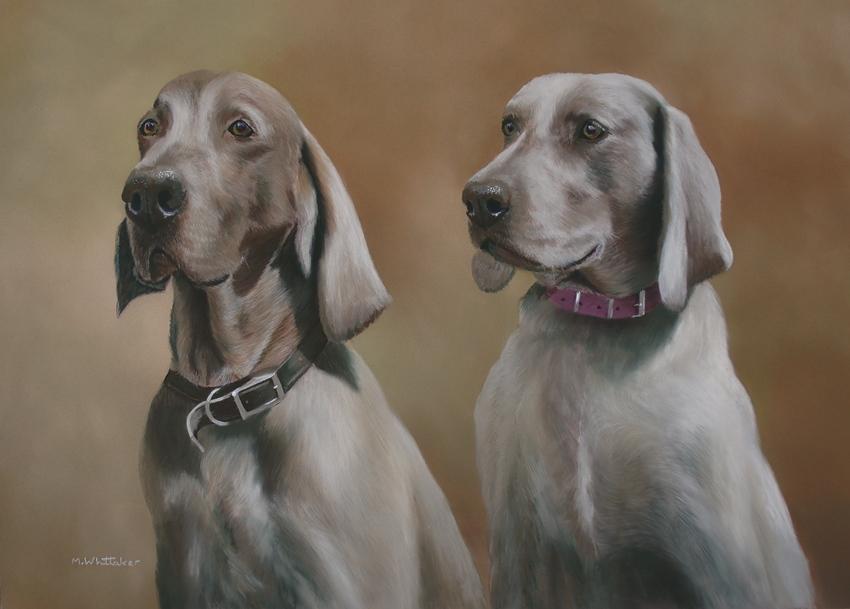 Original Pastel Painting of Hantz & Lucy, Weimaraners