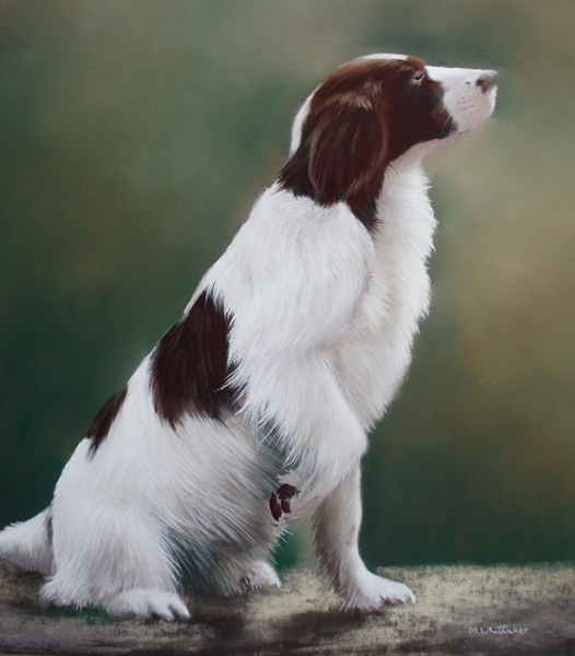Original Pastel Painting Of Loosey, Springer Spaniel