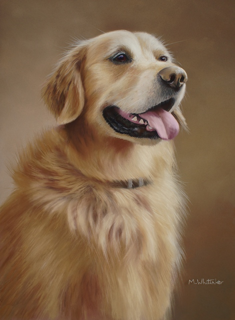 Original Pastel Painting Of Beau, Golden Retriever