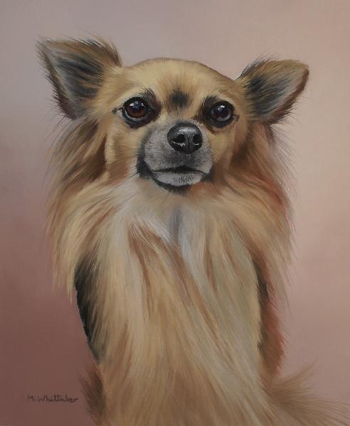 Original Pastel Painting Of Alfie, Chihuahua