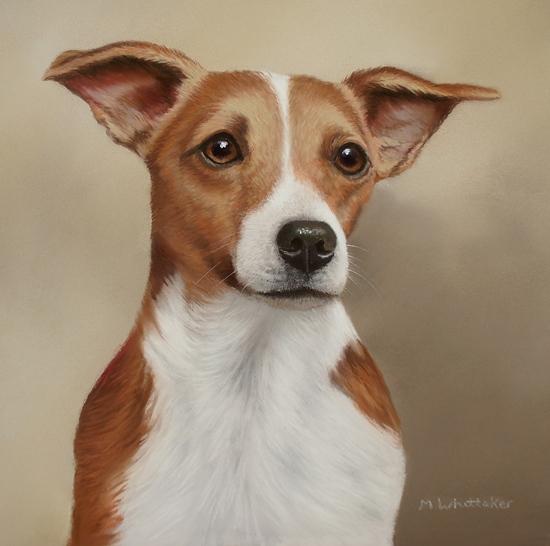 Original Pastel Painting Of Jack Russell Terrier