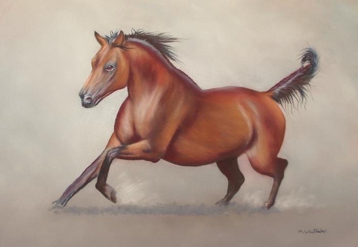 """Arabian Horsepower"""