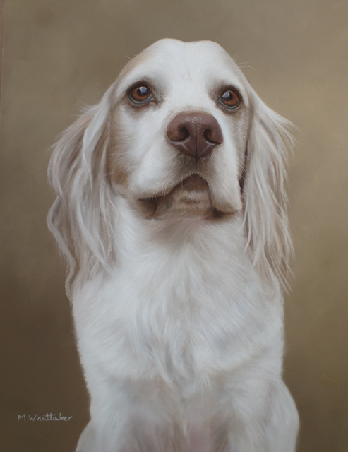Original Pastel Painting Of Bertie