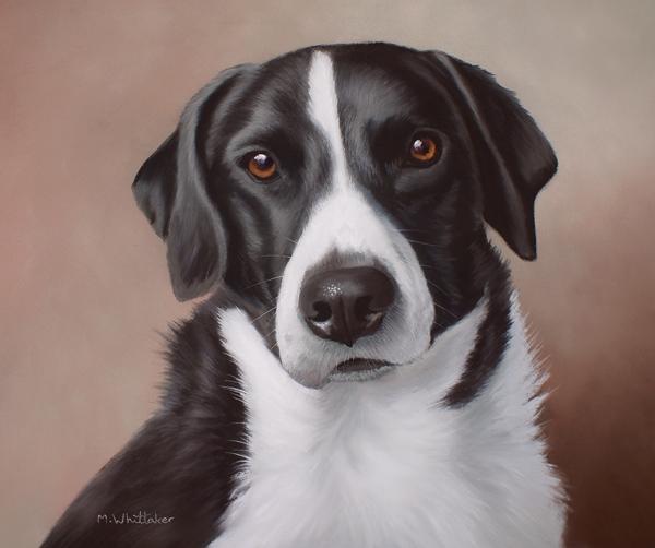 Original Pastel Painting Of Sammy