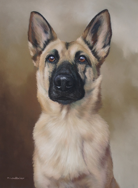 Original Pastel Painting of Bella, Belgian Shepherd