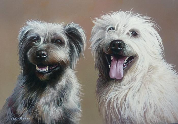 Pastel Portrait Of Molly & Finan, Glen Of Imaal Terriers