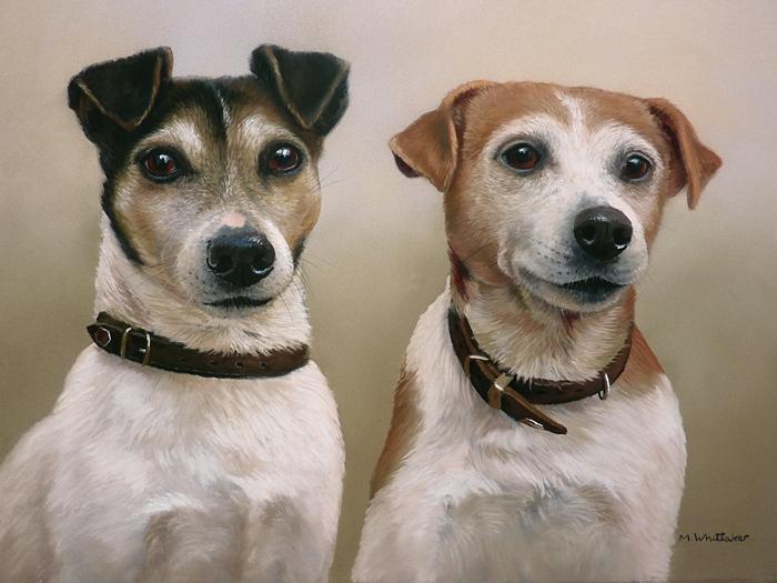 Pastel Portrait Of Jack & Arnie, Jack Russell Terriers