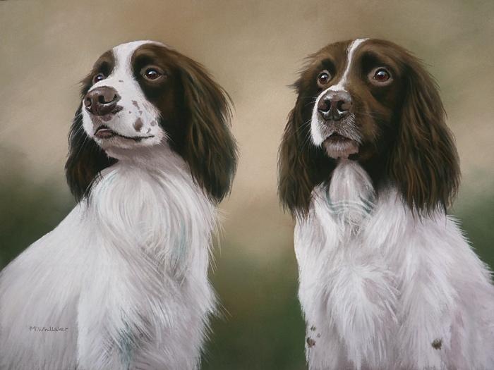 Pastel Painting Of Duke & Jake, Springer Spaniels