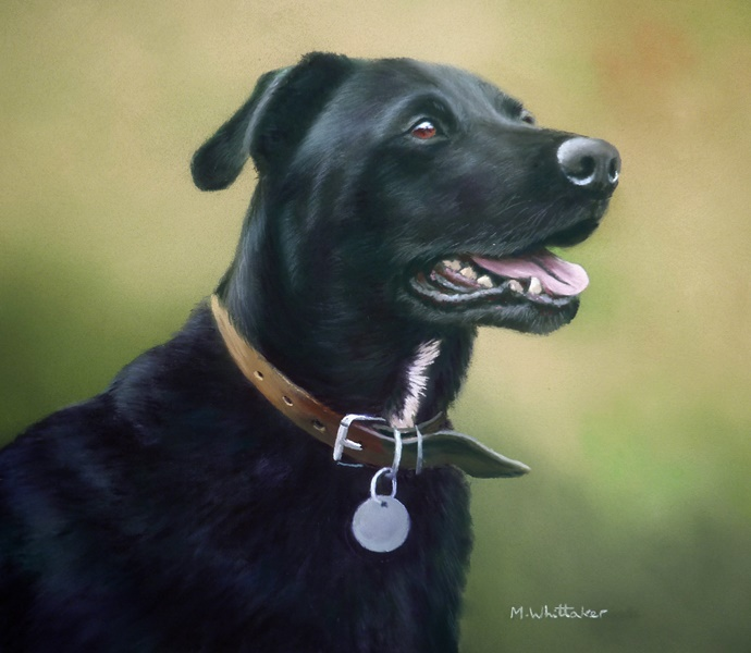 Original Pastel Painting Of Max