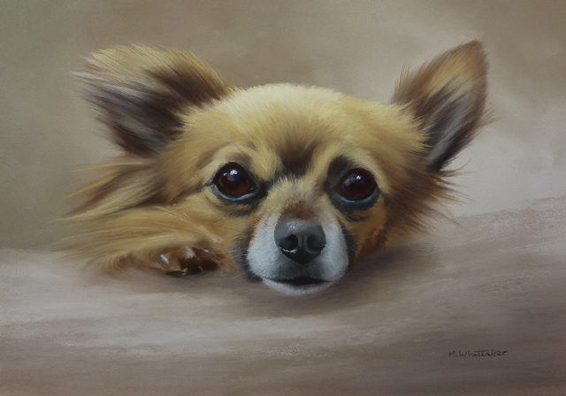 Original Pastel Painting Of Alfie