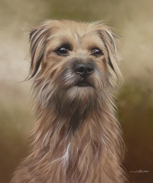 Original Pastel Painting Of Bramble, Border Terrier