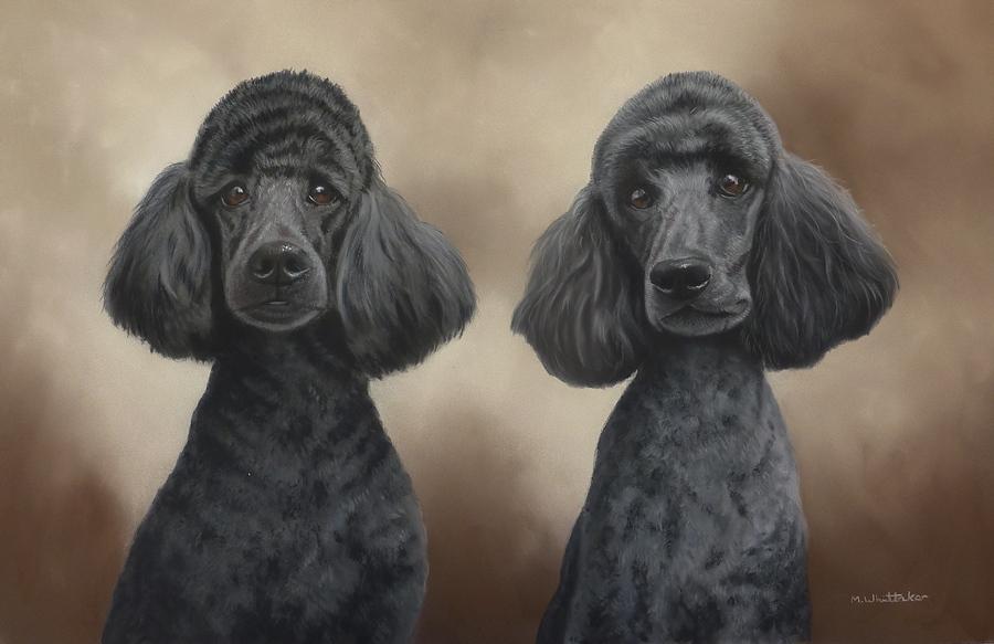 Original Pastel Painting Of Standard Poodles, Rhodri & Fergus