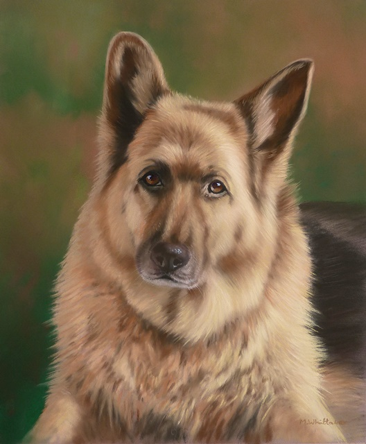 Original Pastel Painting Of Cass