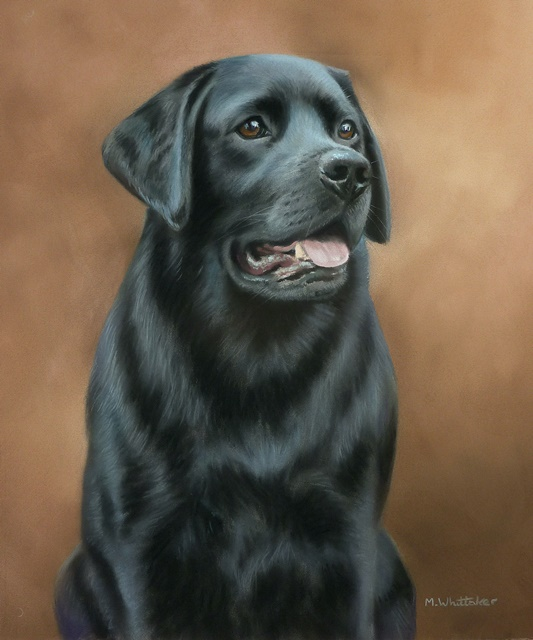 Original Pastel Painting Of Olive