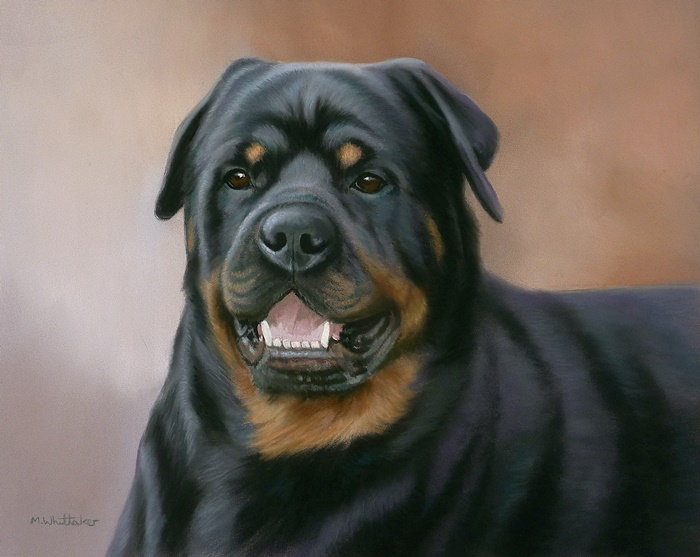 Original Pastel Painting Of Yoda The Rottweiller.